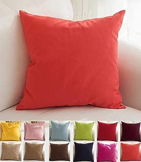 coral colored sofa
