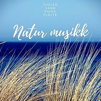 Natur Musikk – Fløytemusikk, Skog, Fugl, Vann, Ro, Zen, Yoga, Meditasjon, Piano, Sove, Bakgrunnsmusikk
