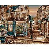 Eainkj DIY Pintura Al Óleo Digital Sala De Estar Dormitorio Comprar Bicicleta Gris Pintura por Número Kits Pinceles Y Pinturas Adultos Niños De Regalo Decoraciones para El Hogar(Sin Marco)