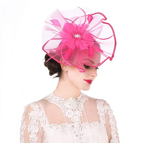 e8dec36e20539 Fascinator Hat Feather Mesh Net Veil Party Hat Ascot Hats Flower Derby Hat  with Clip and