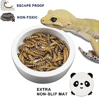 TDPET Ceramic Mini Reptile Worm Dish Lizard Escape Proof Feeding Bowl Circular