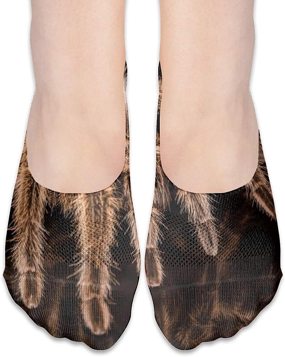 Personalized Tarantula No Show Socks For Women Men