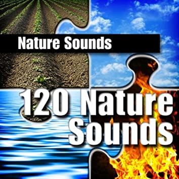 120 Nature Sounds