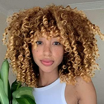 AISI HAIR Synthetic African American Wigs Kinky Curly Hair Wig with Bangs Brown Blonde Mixed Wig Short Curly Wigs for Women Heat Resistant Fiber Afro Curly Wig …