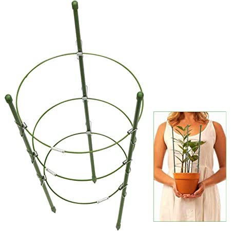Garden Support Rings Trellis for Climbing Plants Flowers with 3 Adjustable Rings