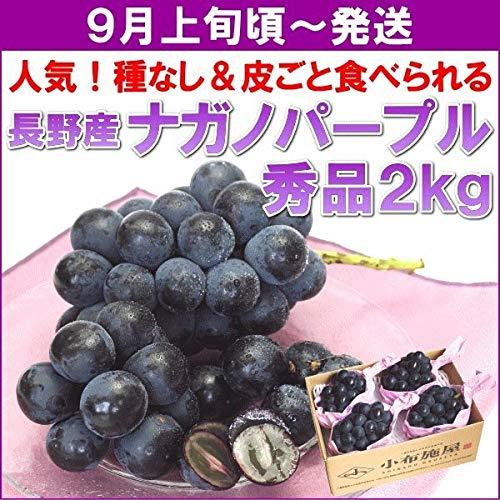 ぶどう ナガノパープル 長野県産「ナガノパープル」 秀品 2kg(3?4房)