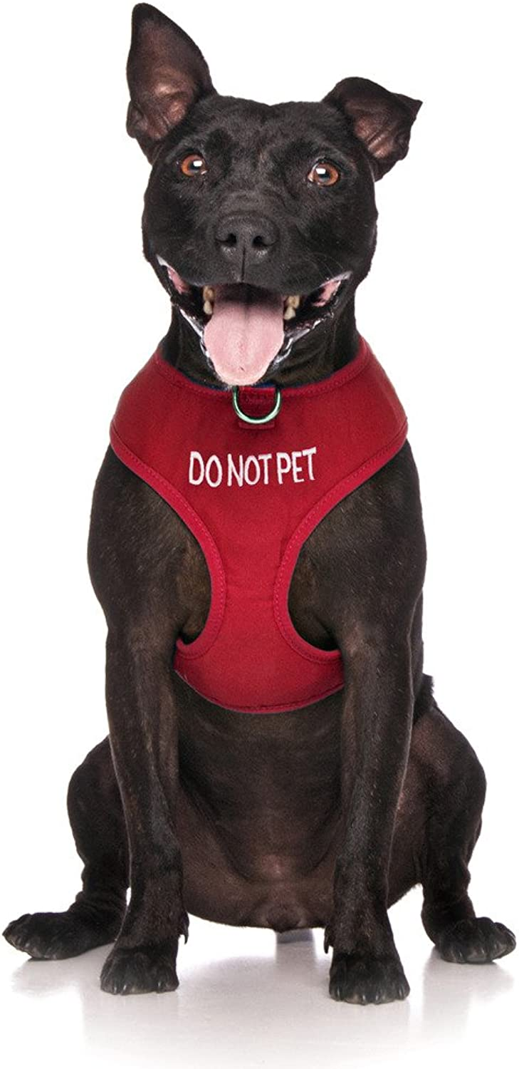 Dexil Limited DO NOT PET Red color Coded NonPull Front and Back D Ring Padded and Waterproof Vest Dog Harness Prevents Accidents by Warning Others of Your Dog in Advance (L)