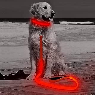HiGuard LED Dog Leash - USB Rechargeable 4ft/120cm Long Nylon Webbing Pet Safety Leash - 3 Flashing Modes Light Up Perfect for Night Walking