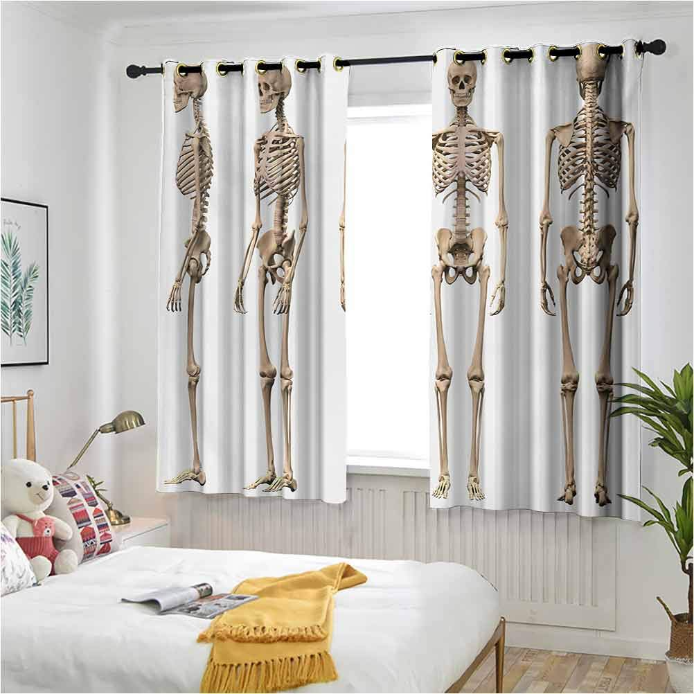 Human Don't miss the campaign Anatomy Thermal Insulated Drapes Man Male S Skeleton OFFicial