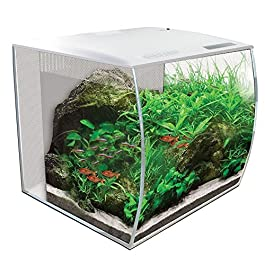Fluval Flex Curved Glass LED Nano Aquarium Fish Tank 57L – White