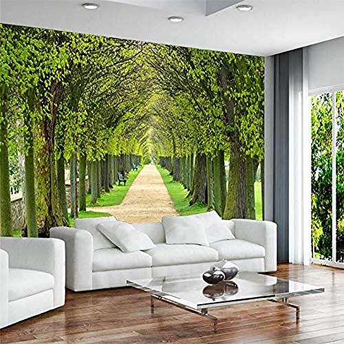 Fondos de pantalla en 3D Modernos hermosos árboles Boulevard murales Sofá Dormitorio Sala de estar TV Fondo Decorac papel pintado pared dormitorio de estar sala de estar fondo No tejido-300cm×210cm
