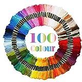 JUNSHUO Hilos de Bordar, 100 Colorear Algodón Madejas 8 Metros 6 Hebras de Hilos Kit, Set Costura Coser Hilos para Tejer, Proyecto de Punto de Cruz, Pulseras de la Amistad, Artes y Manualidades
