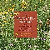 A Backyard Prairie: The Hidden Beauty of Tallgrass and Wildflowers