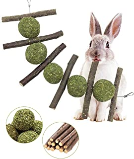 Rabbit Toys, Bunny Chew Toys for Teeth Grinding, 100% Natural Organic Wood Apple Sticks and Timothy Hay Balls Improve Pets...