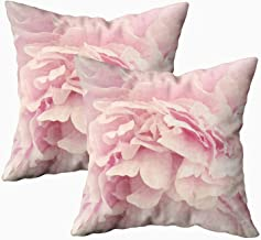Musesh Pack of 2 Pink Peony Petals Cushions Case Throw Pillow Cover for Sofa Home Decorative Pillowslip Gift Ideas Household Pillowcase Zippered Pillow Covers 20X20Inch