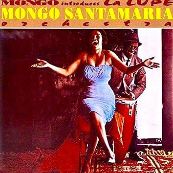 Mongo Introduces...La Lupe!