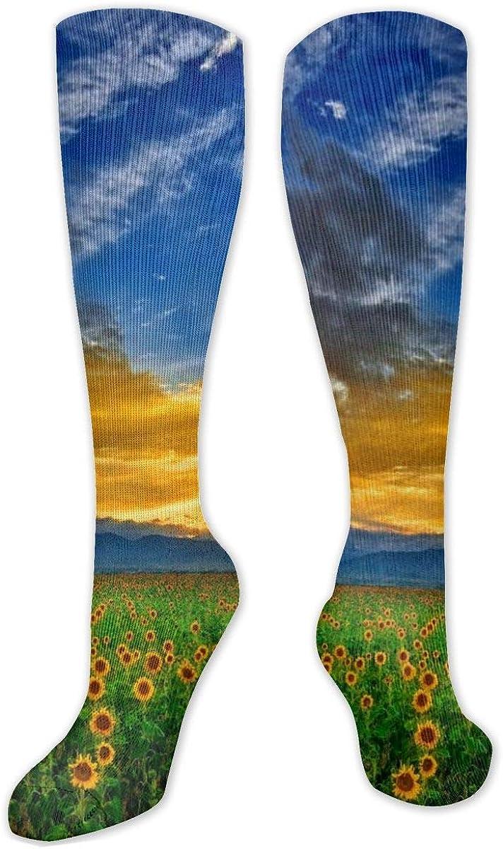 Beautiful Sunflower Field Knee High Socks Leg Warmer Dresses Long Boot Stockings For Womens Cosplay Daily Wear