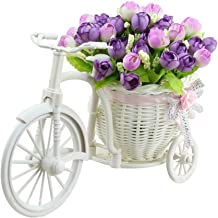 Sky Trends Flower Cycle red and White Rose Flower Plastic Flower Basket with Artificial Flower & Plant Showpiece Gift Set