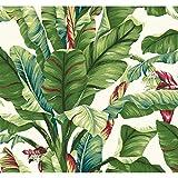York Wallcoverings Tropics Banana Leaf Removable Wallpaper, Green