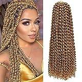 Passion Twist Hair, 6 paquetes de pelo de ganchillo con ondas de agua de 18 pulgadas para cabello largo y bohemio, trenzado de cabello Passion Twist Crochet Hair Extensiones de cabello sintético(27#)