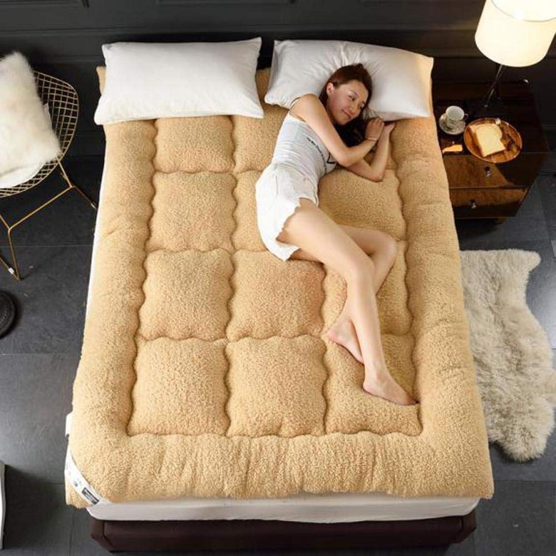 Sleeping Tatami Mat,Foldable Mattress Thick Pad,Tatami Mattress,Mattress,Student Soft Cushion-c 150x200cm(59x79inch)
