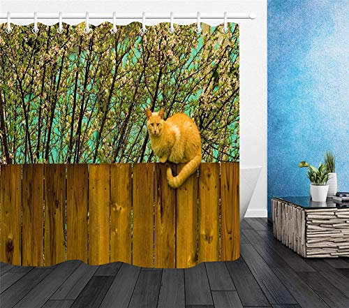 LGY Katze, Die Auf Den Zaun Kriecht. Duschvorhang 180X180Cm. High-Definition-Druck, Hochwertige Stoffe, Freie Haken. Halte Dein Zuhause Frisch.