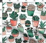 Sukkulenten, Begrenzte Palette, Pflanzen, Töpfe,