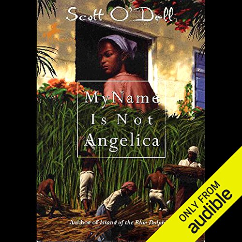 My Name is Not Angelica  audiobook cover art