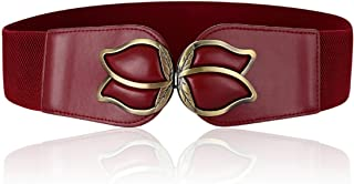 Wenecho Women's Waist Belts Wide Elastic Stretch Cinch Belt with Fashion Metal Interlock Buckle