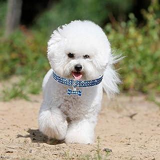 Ardisle Raddoppiare Cane accoppiatore Doppia Piombo 2 vie per due cani di animale domestico Camminare Catena guinzagli Per la sicurezza