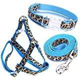Mile High Life Dog Collar, Harness and Leash | Blue Leopard Design | Small | Perfect Accessory for Walking Your Dog