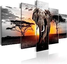 Amazon Com Elephant Wall Decor