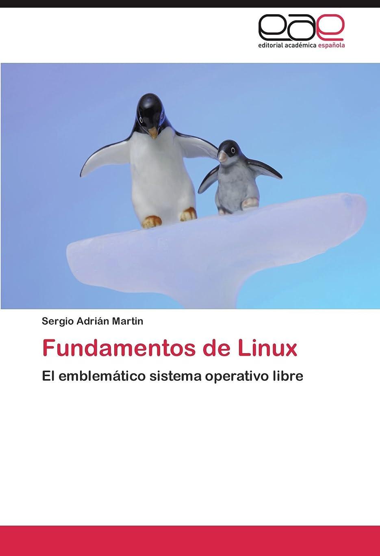 フロー凝視暗殺Fundamentos de Linux
