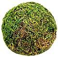 SuperMoss Moss Balls