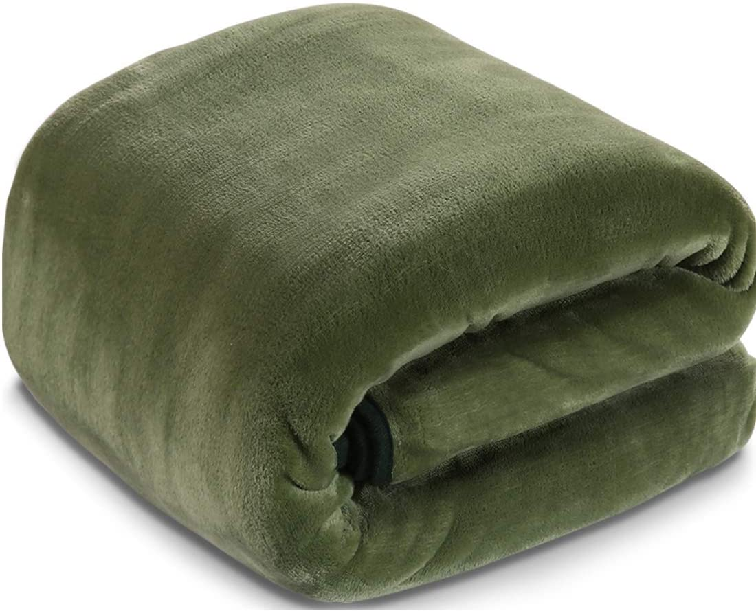 Fleece Blanket Queen Size Fuzzy Soft Plush Blanket 330GSM for All Season Spring Summer Autumn Throws for Couch Bed Sofa, 90 by 90 Inches, Natural Green