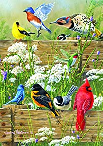 Buffalo Games - Hautman Brothers - Songbird Menagerie - 300 LARGE Piece Jigsaw Puzzle, 21-1/4inx15in by Buffalo Games