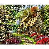 Diy pintura digital cuadros decoración del hogar lienzo pintura digital adornos 40x50 cm