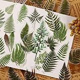 BLOUR 40 unids/Pack Vintage Gran Planta Hojas vitela Pegatina DIY álbum de Recortes Diario Basura Pegatinas Decorativas