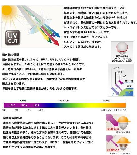 山本光学『SWANSSCP-5スリップオン』