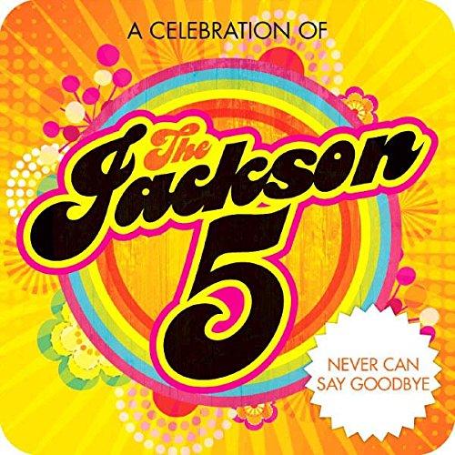 Menards Jackson Mi