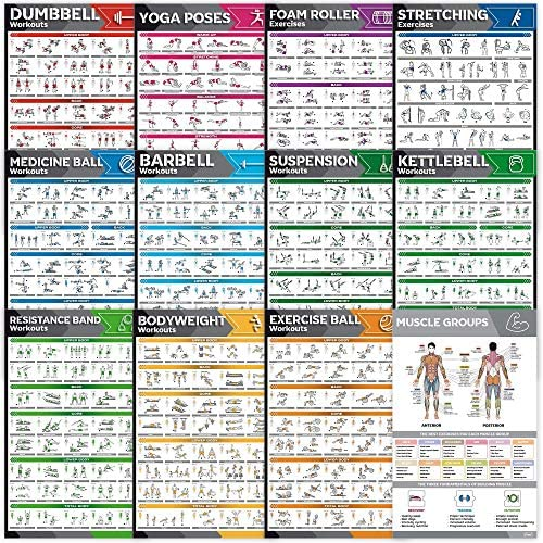 12 Pack Laminated Large Workout Poster Set Perfect Workout Posters For Home Gym Exercise Charts product image