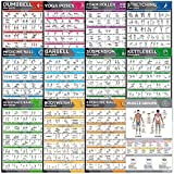 12-Pack Laminated Large Workout Poster Set - Perfect Workout Posters For Home Gym - Exercise Charts Incl. Dumbbell, Yoga Poses, Resistance Band, Kettlebell, Stretching & More Fitness Gym Posters