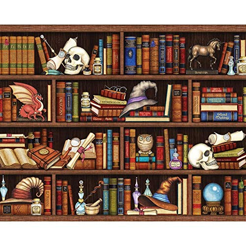 hetingyue DIY Malen nach Zahlen Handgemalte Sammlung Bücherregal Digitale Acrylmalerei, Digitale Acrylmalerei, rahmenlose Malerei 40X50CM