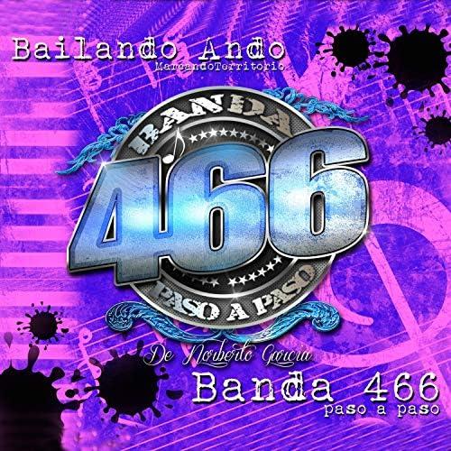 Banda 466 Paso a Paso