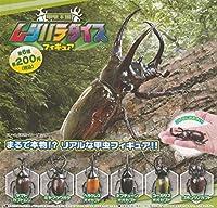 甲虫王国ムシパラダイス フィギュア 全6種