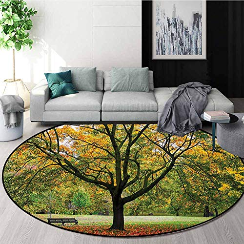 Affordable RUGSMAT Tree Rug Round Home Decor Area Rugs,Third Season of The Year in The Park Dead Lea...