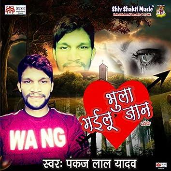 Bhula Gaelu Jaan - Single