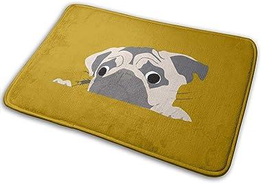 Lovely Puppies Carpet Non-Slip Welcome Front Doormat Entryway Carpet Washable Outdoor Indoor Mat Room Rug 15.7 X 23.6 inch