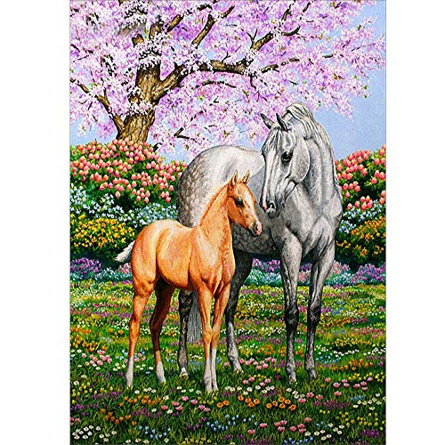 DIY 5D Diamond Painting kit,5D Kit de Pintura de Diamante Completo Caballo animal de jardín Bordado Punto de Cruz Artesanía Artesanal para Pared Decoración del Hogar 30x40 cm