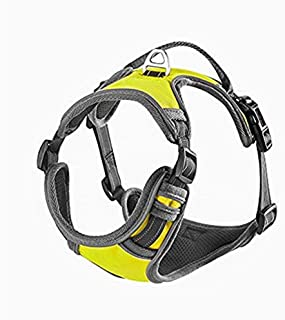 mixmart dog harness